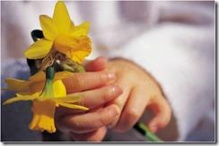 flower as gift