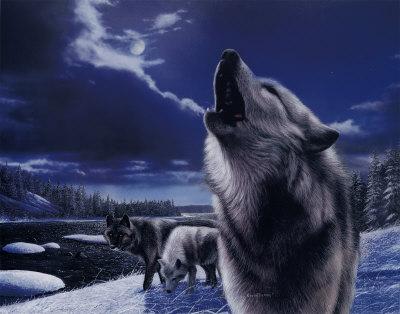 kevin-daniel-howling-wolves