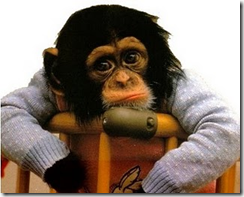 ini monyet, monyet!